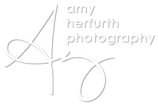 Dallas Wedding Photography | Amy Herfurth Photography logo